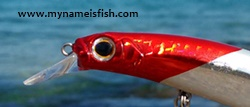 Jackson Artist Red Head Lure Review