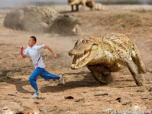 Biến hóa ảnh siêu hài hước từ Photoshop