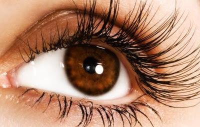 Fakta Menarik Tentang Mata