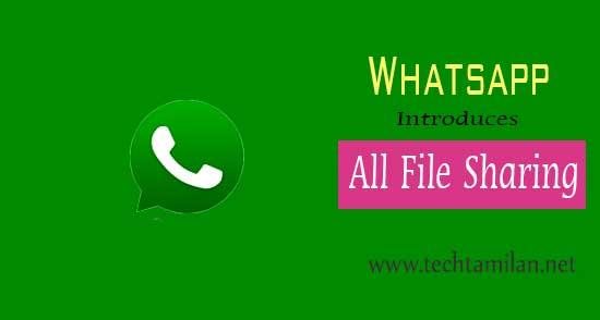 whatsapp file sharing options