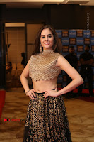 Actress Model Sarah Hopkins Latest Pos in Lehenga Choli at SIIMA Short Film Awards 2017 .COM 0129.JPG