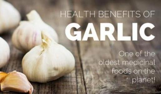 Medicinal Benefits of Garlic May Not Include Prevention of Heart Disease