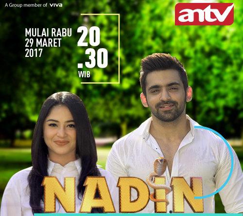 Nadin ANTV