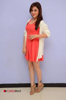 Actress Ragini Nandwani Pictures at Siddhartha Movie Teaser Launch  0142.JPG