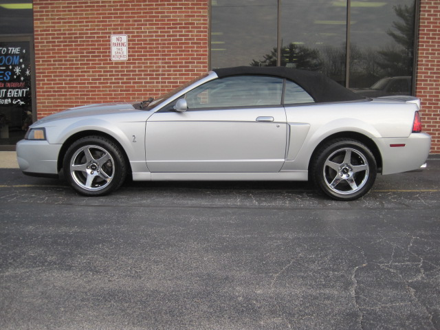 high performance sales 2004 ford mustang cobra convertible for sale. Black Bedroom Furniture Sets. Home Design Ideas