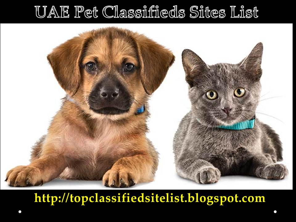 Classified Ads For Pets