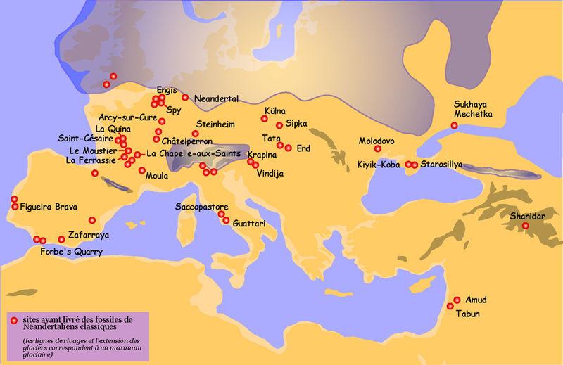 Cartina Italia 20000 Anni Fa.Storia Storia Dell Europa N 3 Da 130 000 Anni Fa Al 40 000 P E V A C