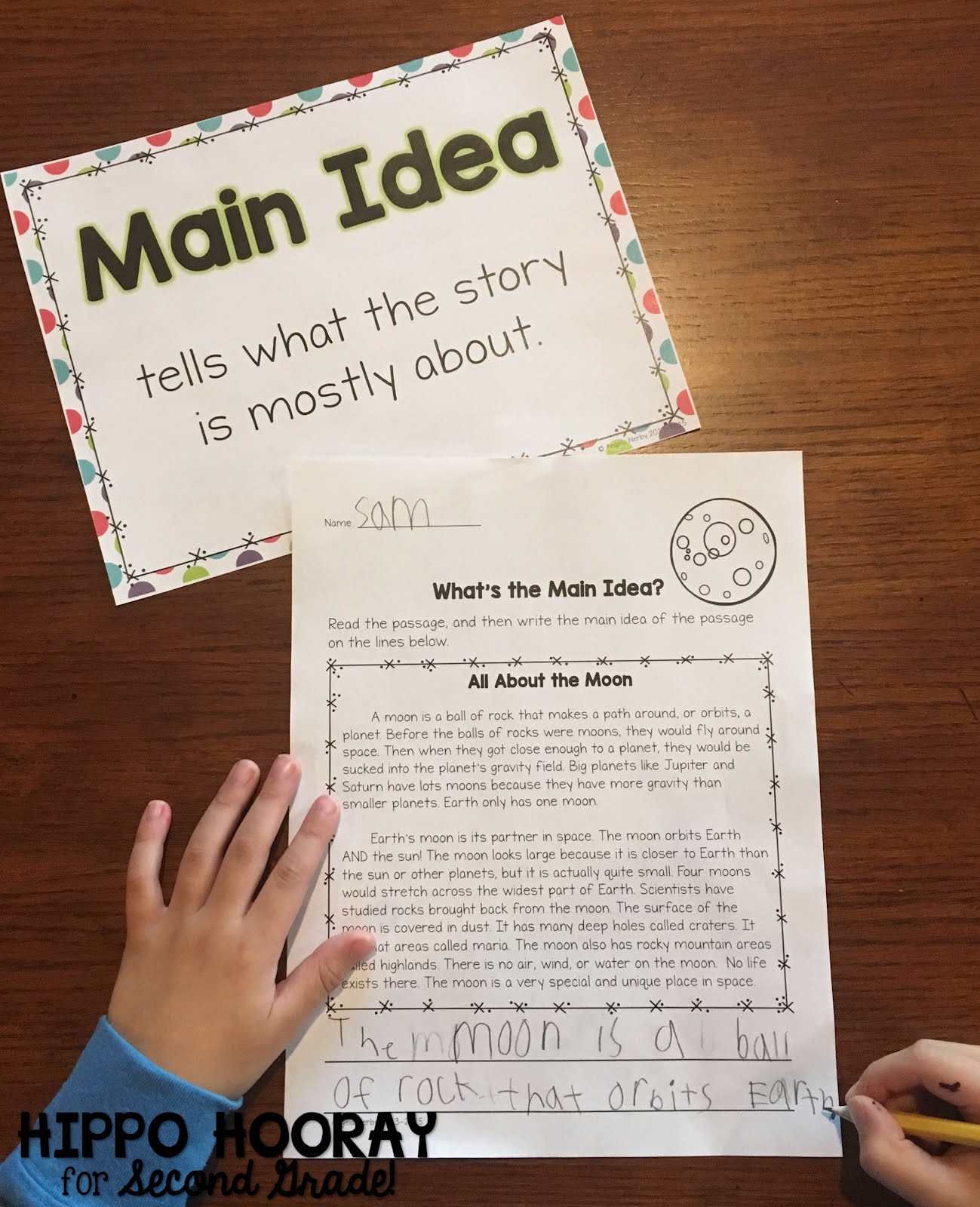 Teaching Main Idea In Nonfiction Texts Hippo Hooray For