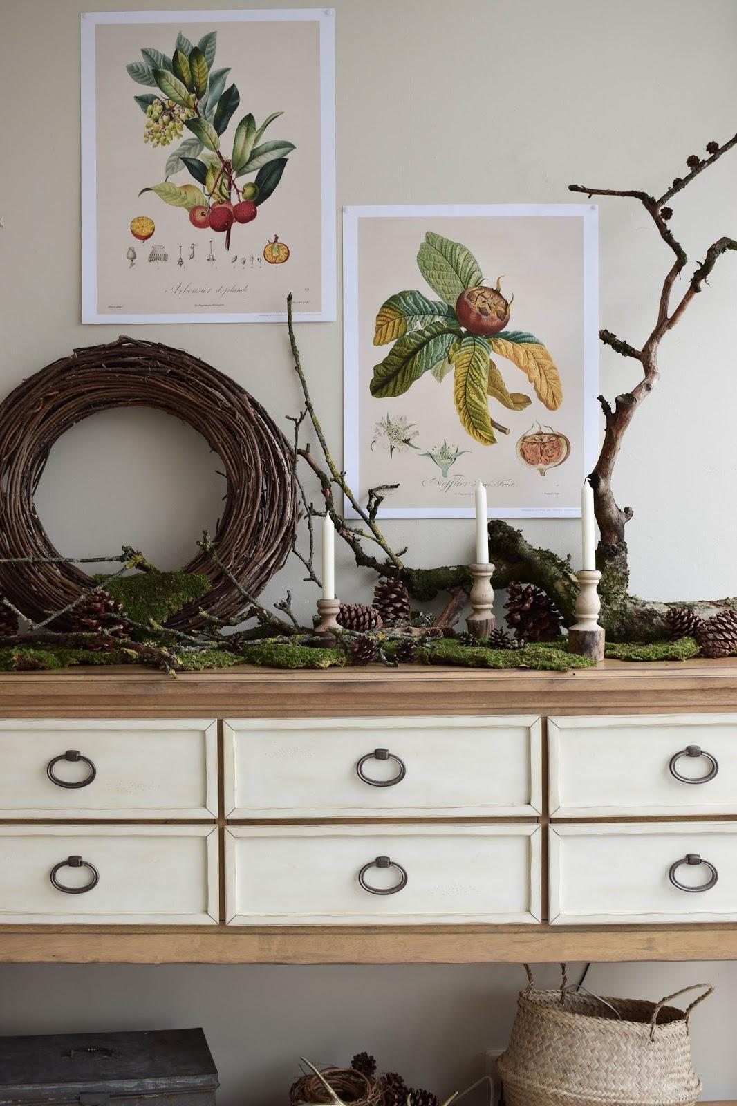 Kalender 2019 mit botanischen Zeichnungen Drucke Poster Deko Dekoidee Wanddeko von DUMONT teNeues Naturdeko mit Moos Ästen