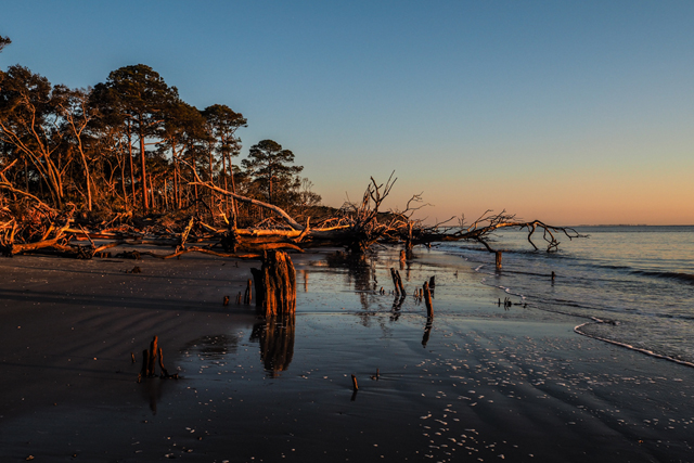 North Beach Hunting Island South Carolina