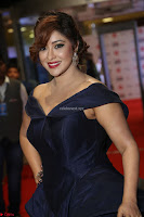 Payal Ghosh aka Harika in Dark Blue Deep Neck Sleeveless Gown at 64th Jio Filmfare Awards South 2017 ~  Exclusive 059.JPG