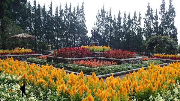 Melrimba Garden, Puncak