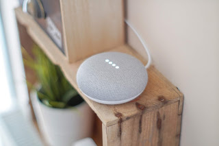 Voice search with Google home assistant