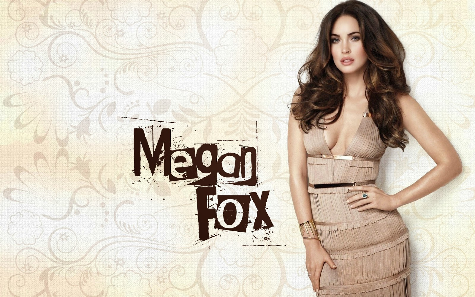 hot and sexy megan fox images