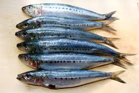 Sardines healthy food