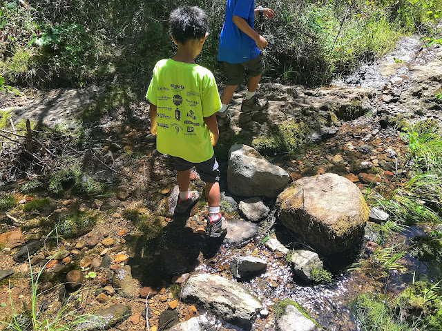 little stream crossing on Table Rock Hike