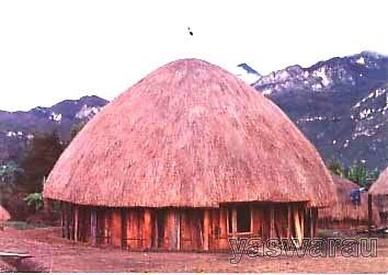 Desain Asli Rumah Adat Papua