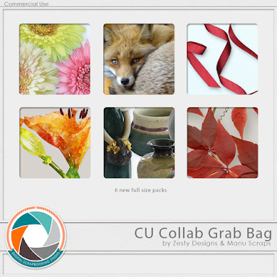 https://www.digitalscrapbookingstudio.com/digital-art/grab-bags/cu-dsd-grab-bag-by-zesty-designs-and-manu-scraps/