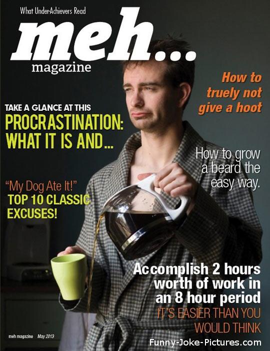 Hilarious Meh Underachievers Magazine