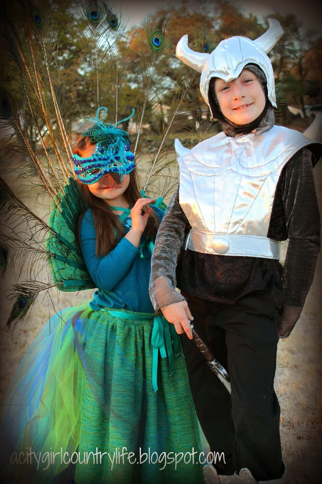 City Girl Country Life: Peacock Costume And Knight Costume