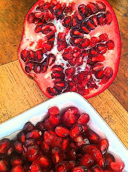 Artistic rendering photo image of pomegranate
