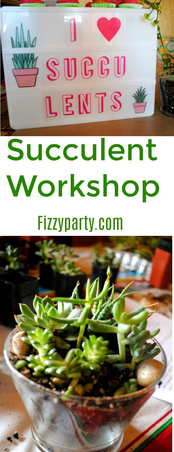 Succulent- workshop-Fizzy Party