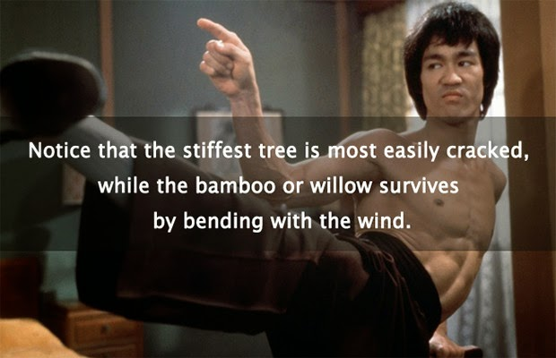 The Wisdom of Bruce Lee: 33 Quotes on Mastery, Martial Arts and Consciousness