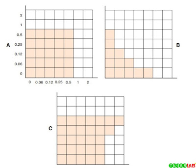 Assessment of antimicrobial combinations with the checkerboard method.