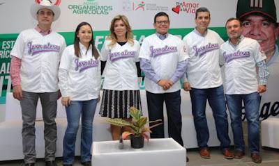 """Gobernadora y """"Toro"""" Valenzuela reconocen labor de jornaleros"""