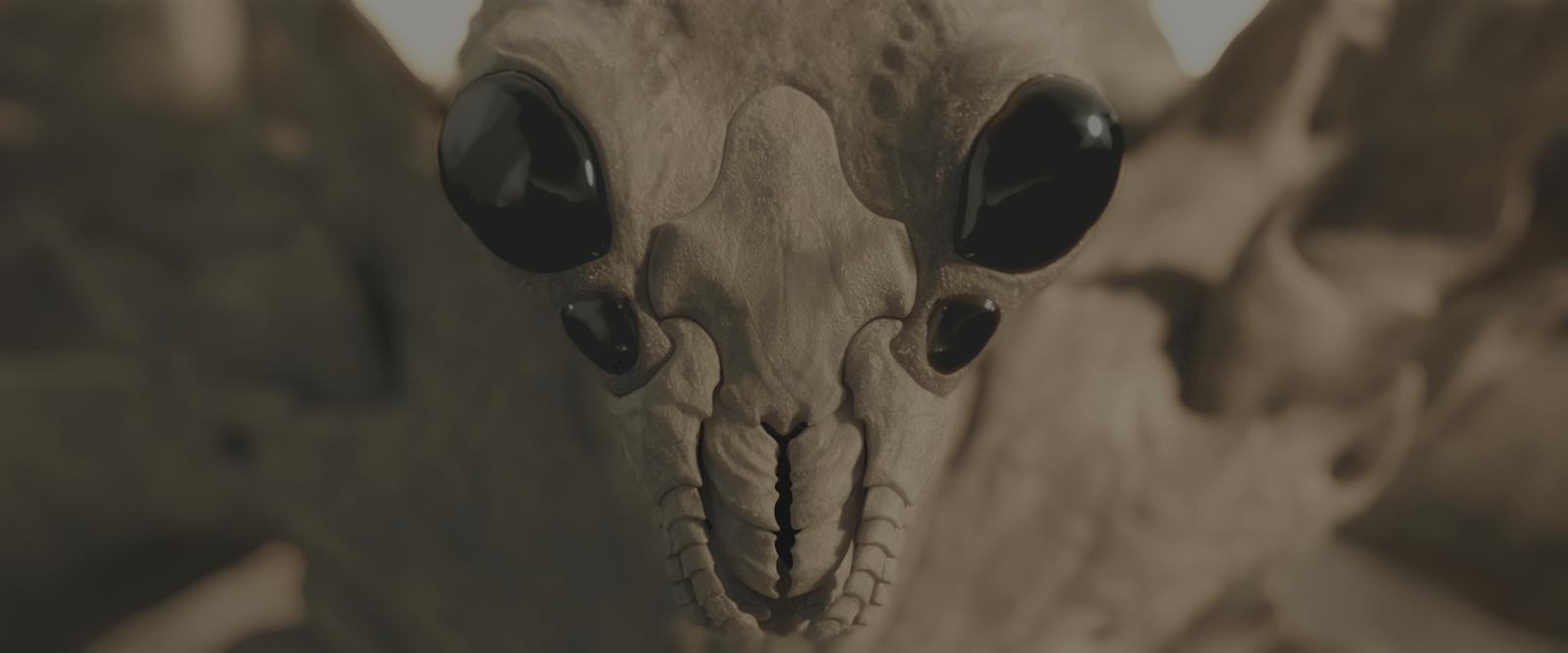 El Juego de Ender (2013) 4K UHD [HDR] Latino-Castellano-Ingles captura 2