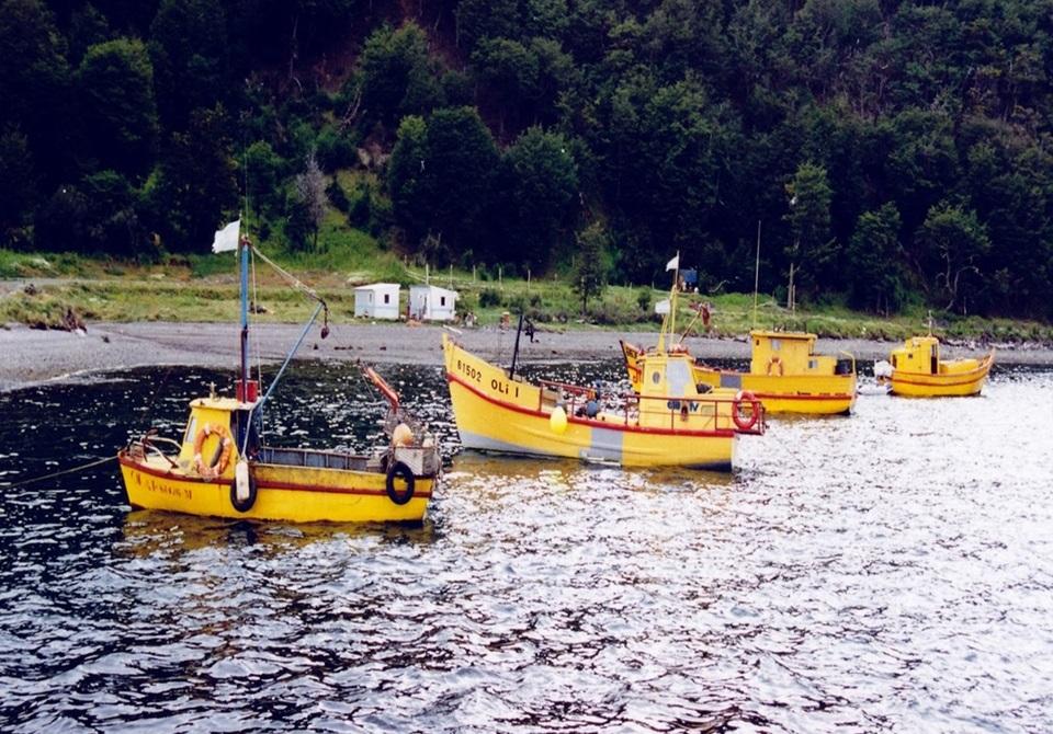 Alerta por marea roja en Almanza