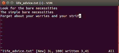 Vim file written