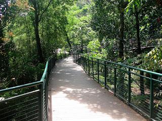 Forest Walk - Babakan Siliwangi - Kota Bandung