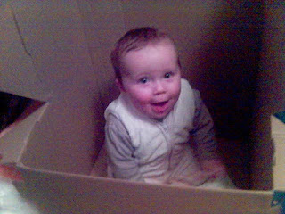 Baby enjoying the joys of an empty cardboard box.