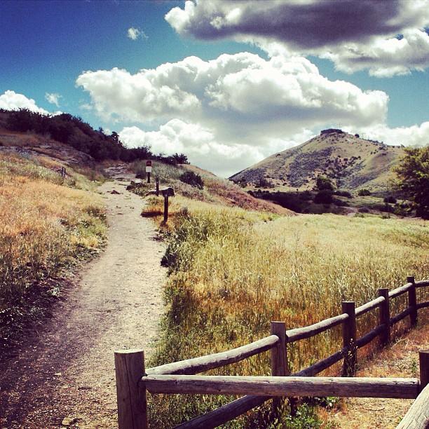 Best Nature Instagram: June 2012