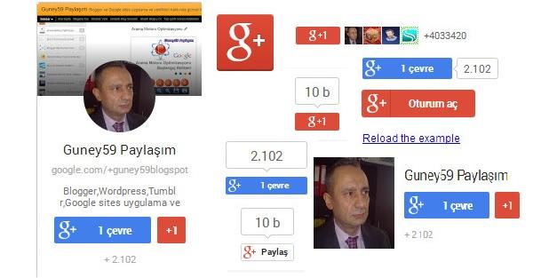 Google Plus Rozet Eklentileri