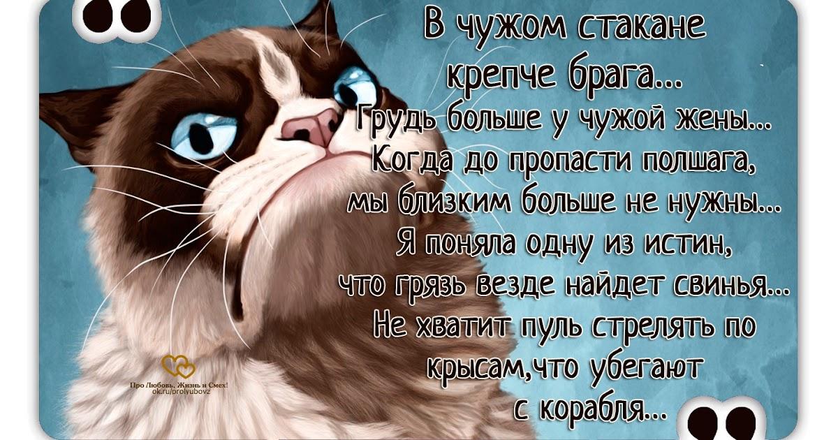 Про любовь жизнь и смех картинки смешные