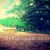 Rumah Pohon TPK Jatirogo