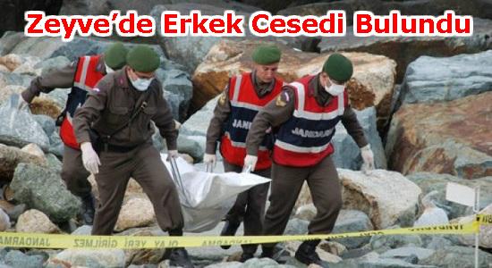 ERMENEK,ZEYVE, MERSİN, Anamur,