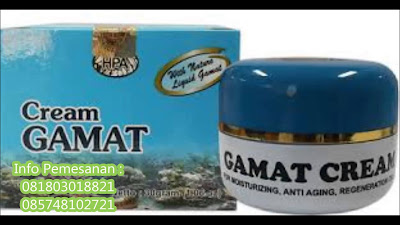 Jelly Gamat Cream Penghilang Jerawat, Pemutih, dan Perawatan Wajah Alami Aman BerBPOM