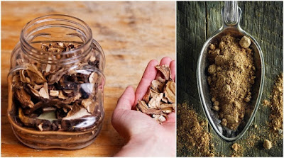 6 Reasons To Add Mushroom Powder To Your Diet