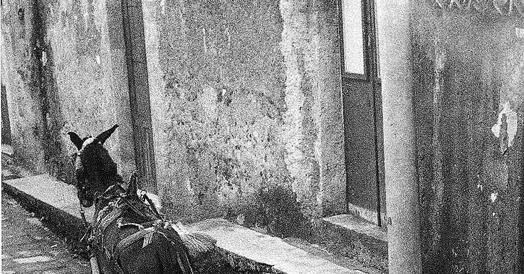 40 Breathtaking Black and White Photographs Capture Everyday Life in Palermo, Sicily in the 1950s and 1960s