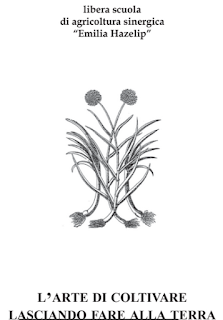 https://campagnano-rap.blogspot.com/2017/04/dispensa-agricoltura-sinergica.html
