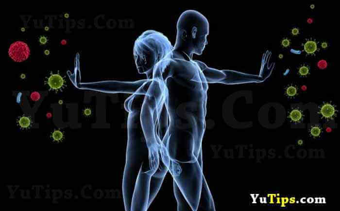 cara menjaga daya tahan tubuh
