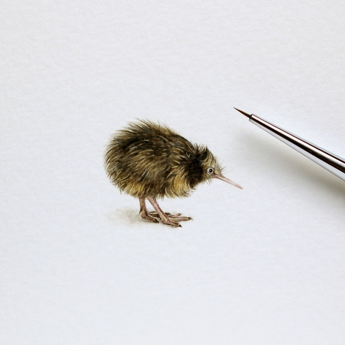 13-Kiwi-Julia-Las-Tiny-Animal-Watercolor-Paintings-and-Other-Miniatures-www-designstack-co