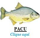 Peixe, Pacu