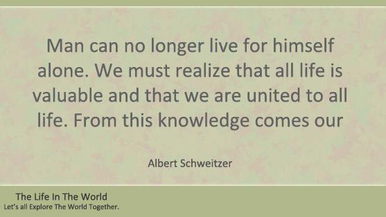 Top 10 Albert Schweitzer Quotes - The Life In The World