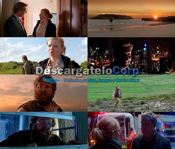 Oddball DVDrip Español Latino