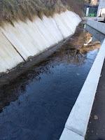 コンクリの水路が凍っている様子
