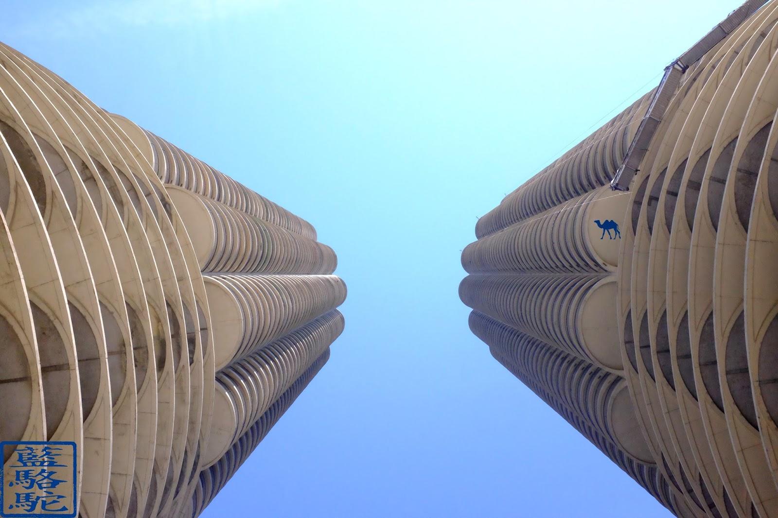 Le Chameau Bleu - Blog Voyage Chicago USA -  Skycrapper de Chicago Illinois USA